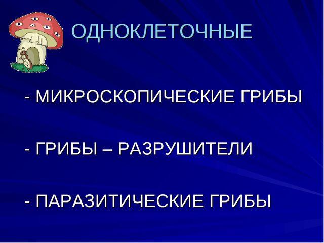 ОДНОКЛЕТОЧНЫЕ - МИКРОСКОПИЧЕСКИЕ ГРИБЫ - ГРИБЫ – РАЗРУШИТЕЛИ - ПАРАЗИТИЧЕСКИЕ...