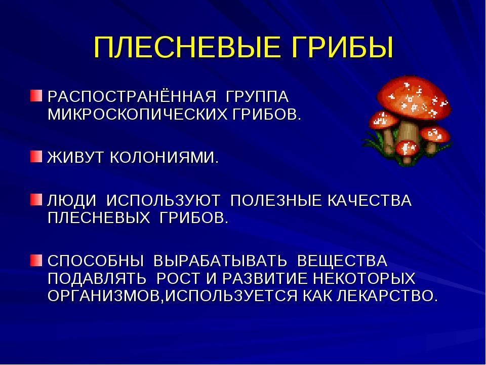 ПЛЕСНЕВЫЕ ГРИБЫ РАСПОСТРАНЁННАЯ ГРУППА МИКРОСКОПИЧЕСКИХ ГРИБОВ. ЖИВУТ КОЛОНИЯ...
