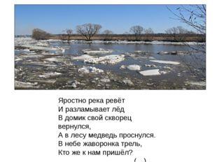 Яростно река ревёт И разламывает лёд В домик свой скворец вернулся, А в лесу