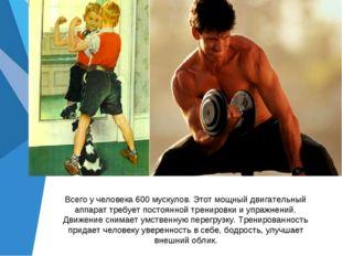 Всего у человека 600 мускулов. Этот мощный двигательный аппарат требует посто