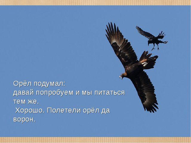 Орёл подумал: давай попробуем и мы питаться тем же. Хорошо. Полетели орёл да...