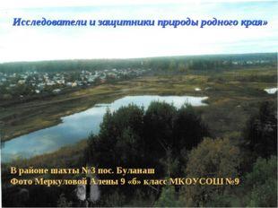 Исследователи и защитники природы родного края» В районе шахты №3 пос. Булана