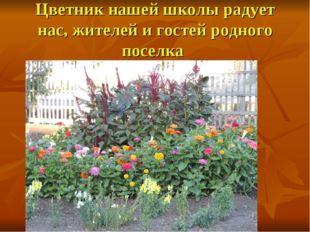 Цветник нашей школы радует нас, жителей и гостей родного поселка