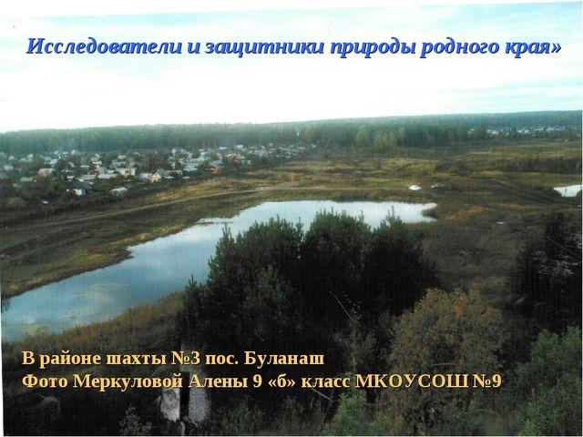 Исследователи и защитники природы родного края» В районе шахты №3 пос. Булана...