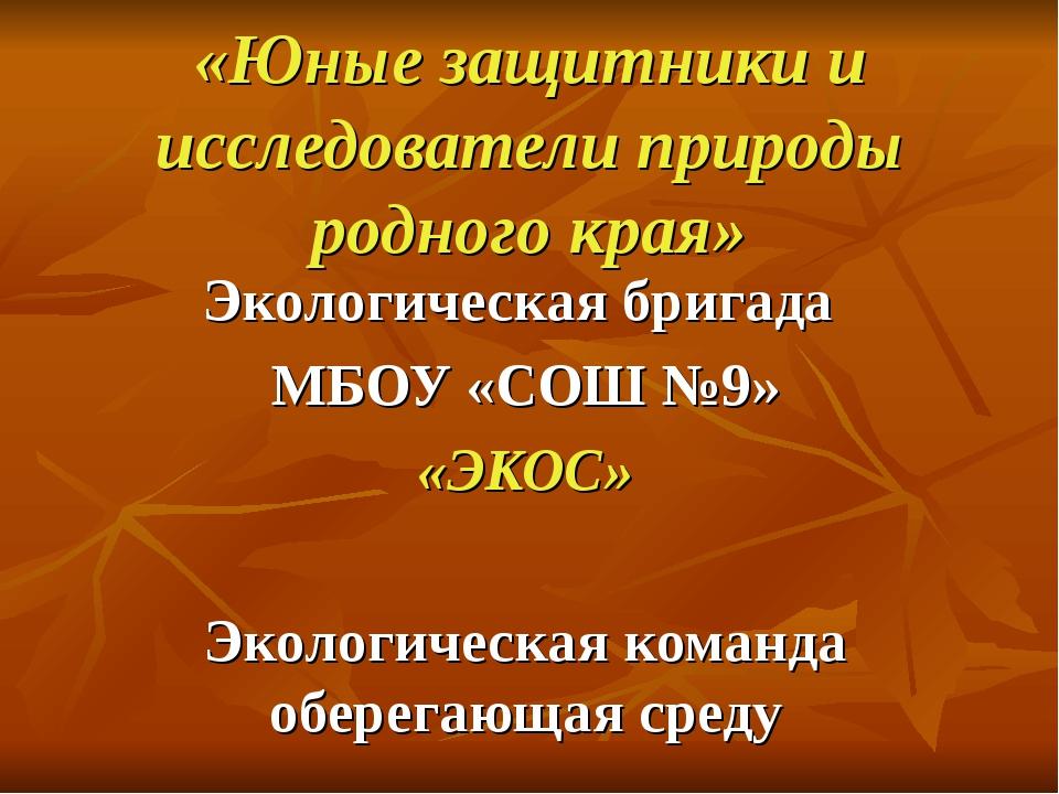 «Юные защитники и исследователи природы родного края» Экологическая бригада М...