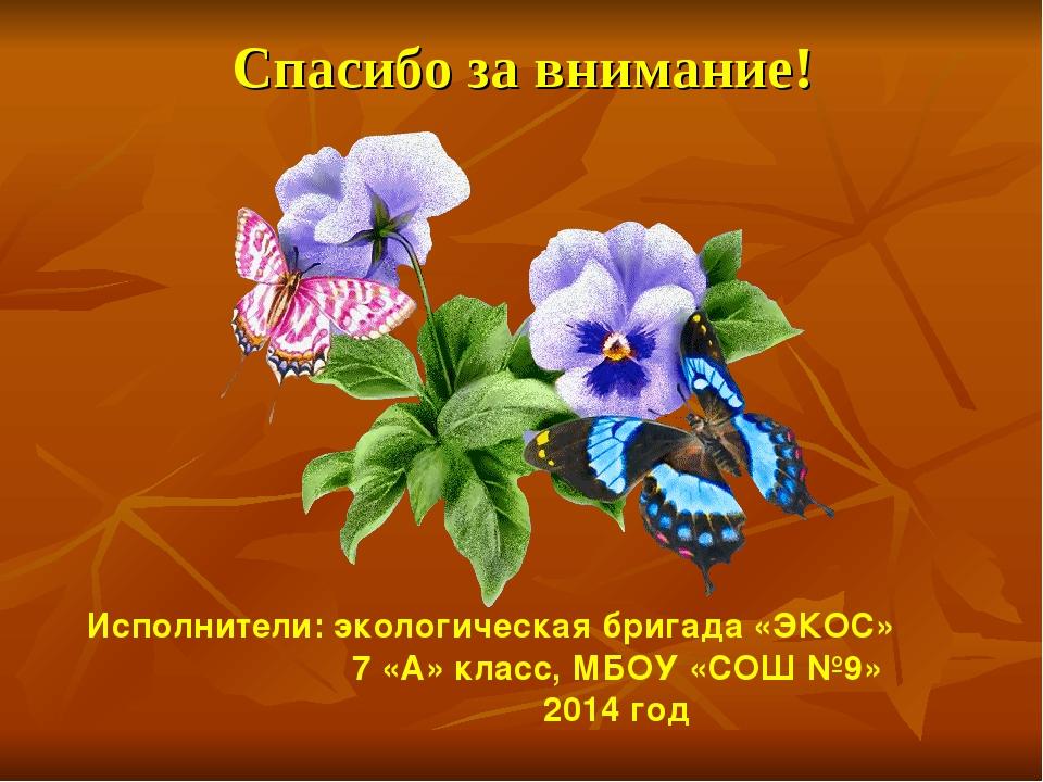 Спасибо за внимание! Исполнители: экологическая бригада «ЭКОС» 7 «А» класс, М...