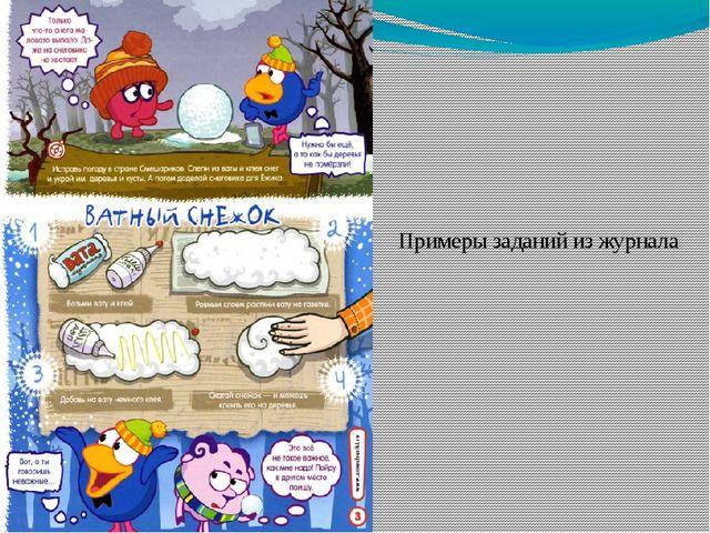Примеры заданий из журнала