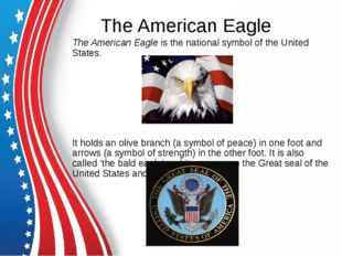 The American Eagle The American Eagle is the national symbol of the United St