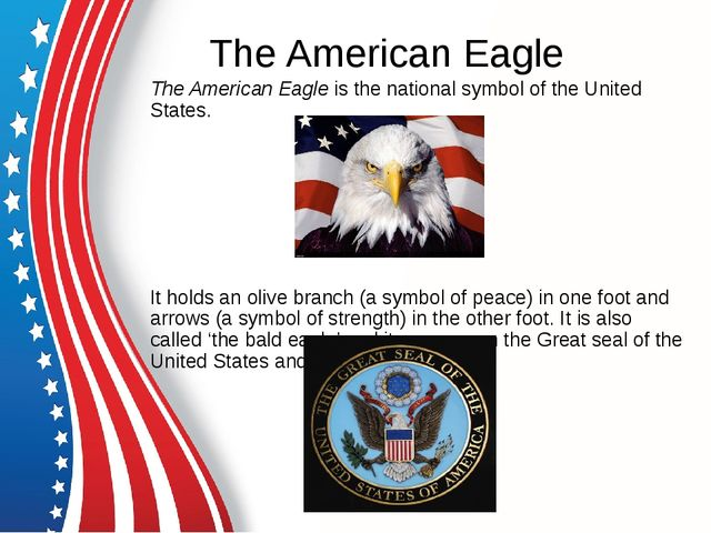 The American Eagle The American Eagle is the national symbol of the United St...