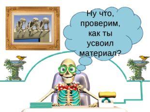 Костя Косточкин Ну что, проверим, как ты усвоил материал?