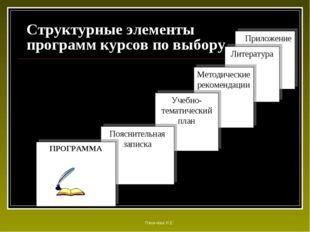 Структурные элементы программ курсов по выбору Приложение Литература Методиче