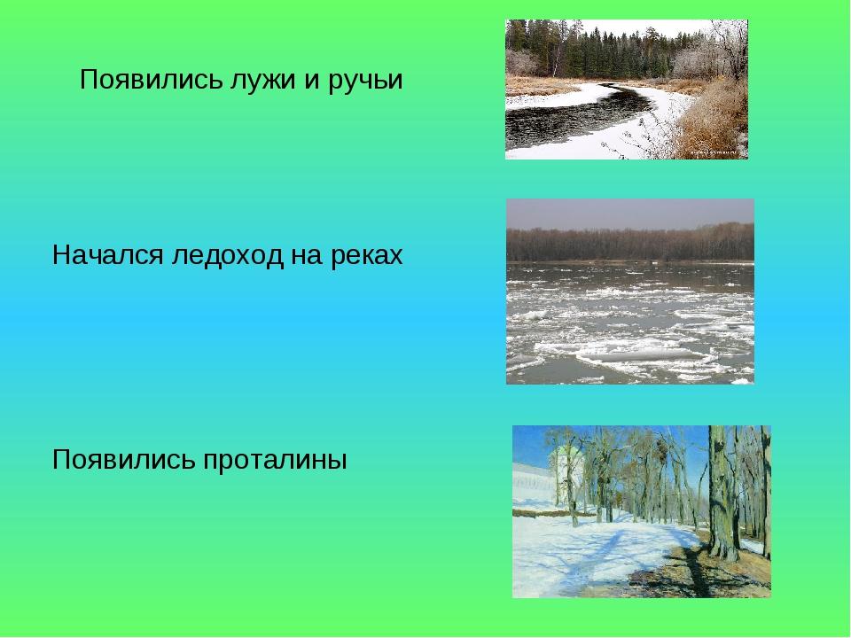 Появились лужи и ручьи Начался ледоход на реках Появились проталины