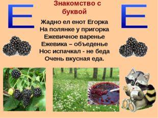 Знакомство с буквой Жадно ел енот Егорка На полянке у пригорка Ежевичное варе