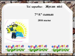 """Тақырыбы: Жусан иісі 7""""А"""" сынып 2016 жылы"""