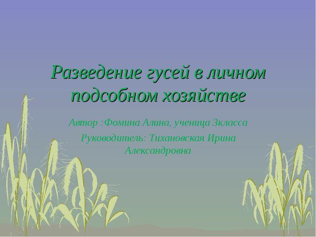 Разведение гусей в личном подсобном хозяйстве Автор :Фомина Алина, ученица 3к...