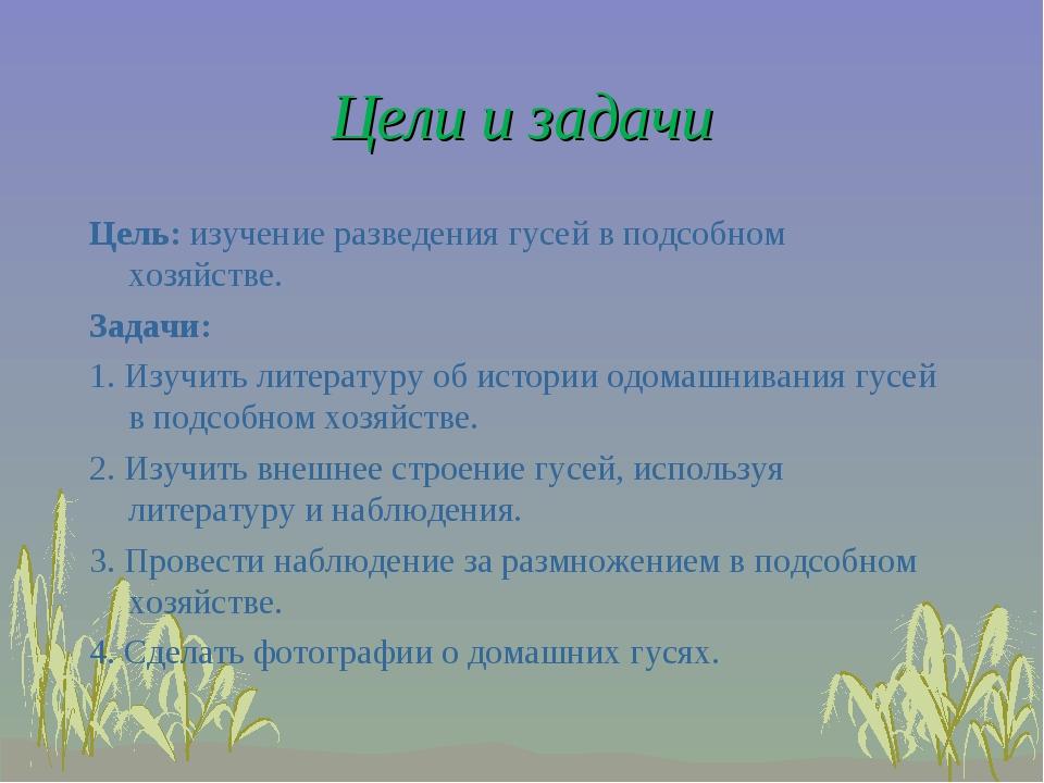Цели и задачи Цель: изучение разведения гусей в подсобном хозяйстве.  Задачи...