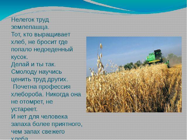 Нелегок труд землепашца. Тот, кто выращивает хлеб, не бросит где попало недое...