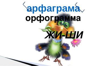 орфограмма ЖИ-ШИ арфаграма