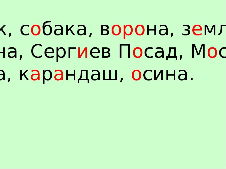 Ученик, собака, ворона, земляника, корзина, Сергиев Посад, Москва, корова, ка...