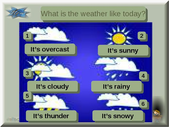 What is the weather like today? It's overcast It's sunny It's cloudy It's rai...