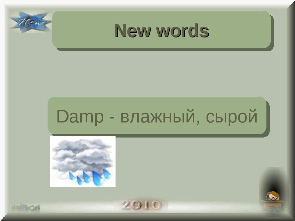 New words Damp - влажный, сырой