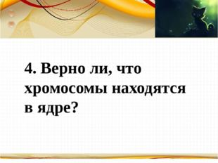 Борисова Анна Владимировна 4. Верно ли, что хромосомы находятся в ядре?
