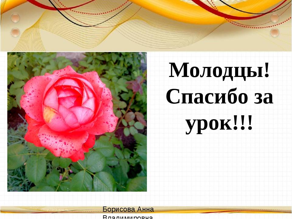Молодцы! Спасибо за урок!!! Борисова Анна Владимировна