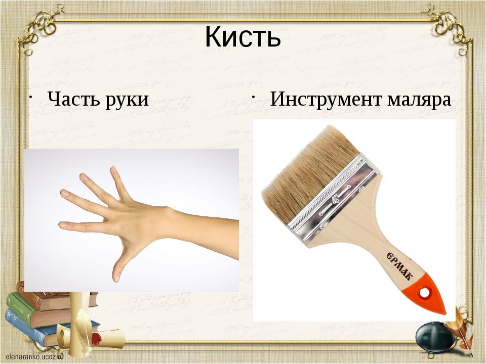 Кисть Часть руки Инструмент маляра