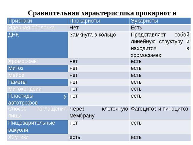 Сравнительная характеристика прокариот и эукариот Признаки Прокариоты Эукари...