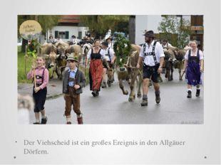 Der Viehscheid ist ein großes Ereignis in den Allgäuer Dörfern.
