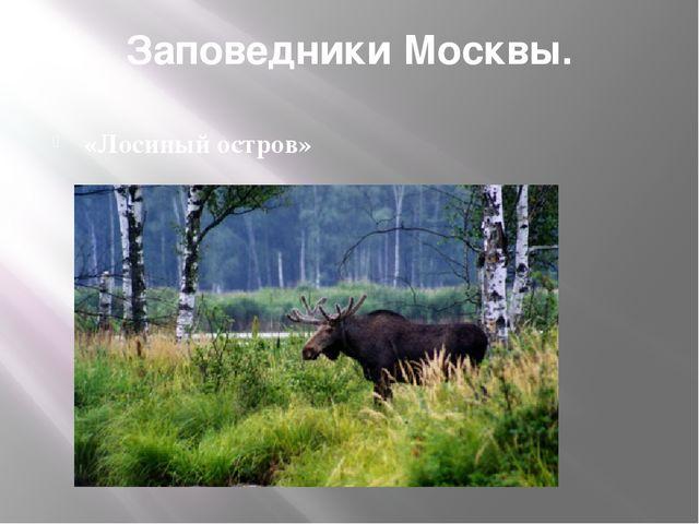 Заповедники Москвы. «Лосиный остров»