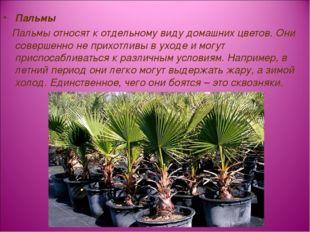 Пальмы Пальмы относят к отдельному видудомашних цветов. Они совершенно не пр