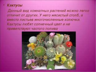 Кактусы Данный вид комнатных растений можно легко отличит от других. У него м