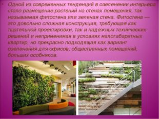 Одной из современных тенденций в озеленении интерьера стало размещение растен