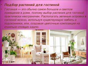 Подбор растений для гостиной Гостиная — это обычно самое большое и светлое по