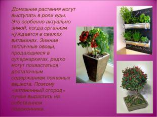 Домашние растения могут выступать в роли еды. Это особенно актуально зимой,