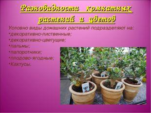 Разновидности комнатных растений и цветов Условно виды домашних растений подр