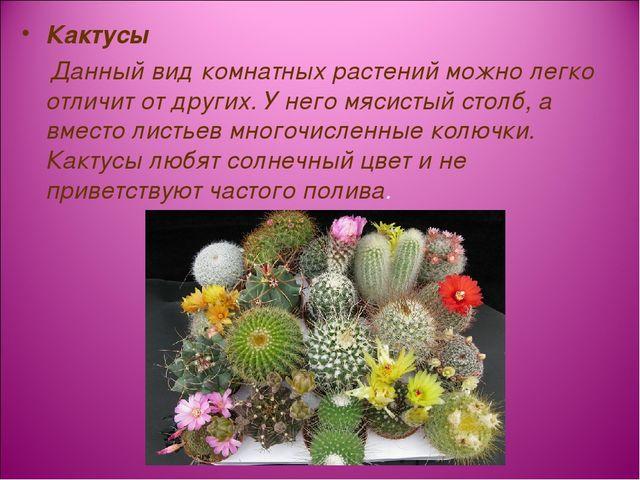 Кактусы Данный вид комнатных растений можно легко отличит от других. У него м...