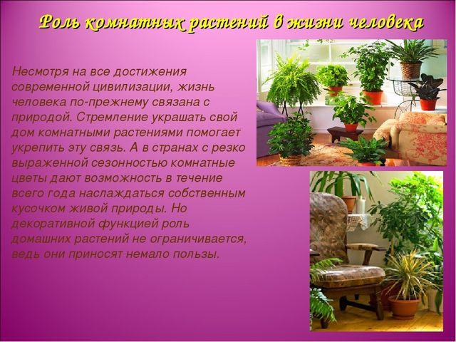Роль комнатных растений в жизни человека Несмотря на все достижения современн...