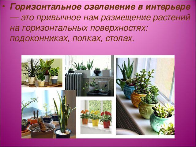 Горизонтальное озеленение в интерьере — это привычное нам размещение растений...