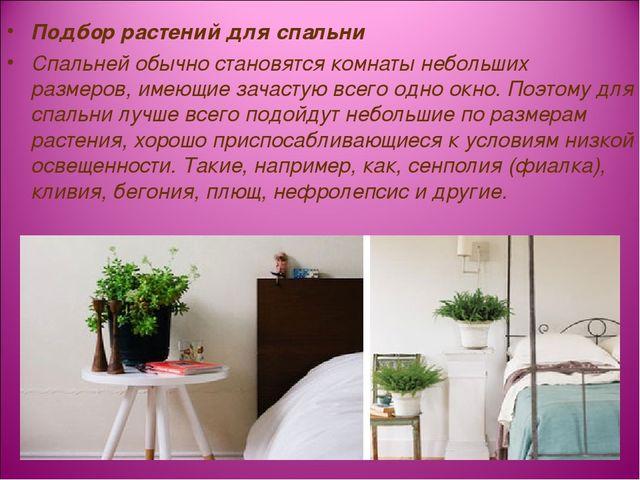 Подбор растений для спальни Спальней обычно становятся комнаты небольших разм...