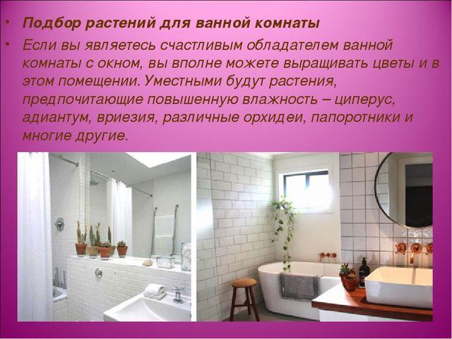 Подбор растений для ванной комнаты Если вы являетесь счастливым обладателем в...