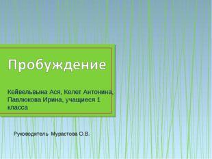 Кейвельвына Ася, Келет Антонина, Павлюкова Ирина, учащиеся 1 класса Руководит
