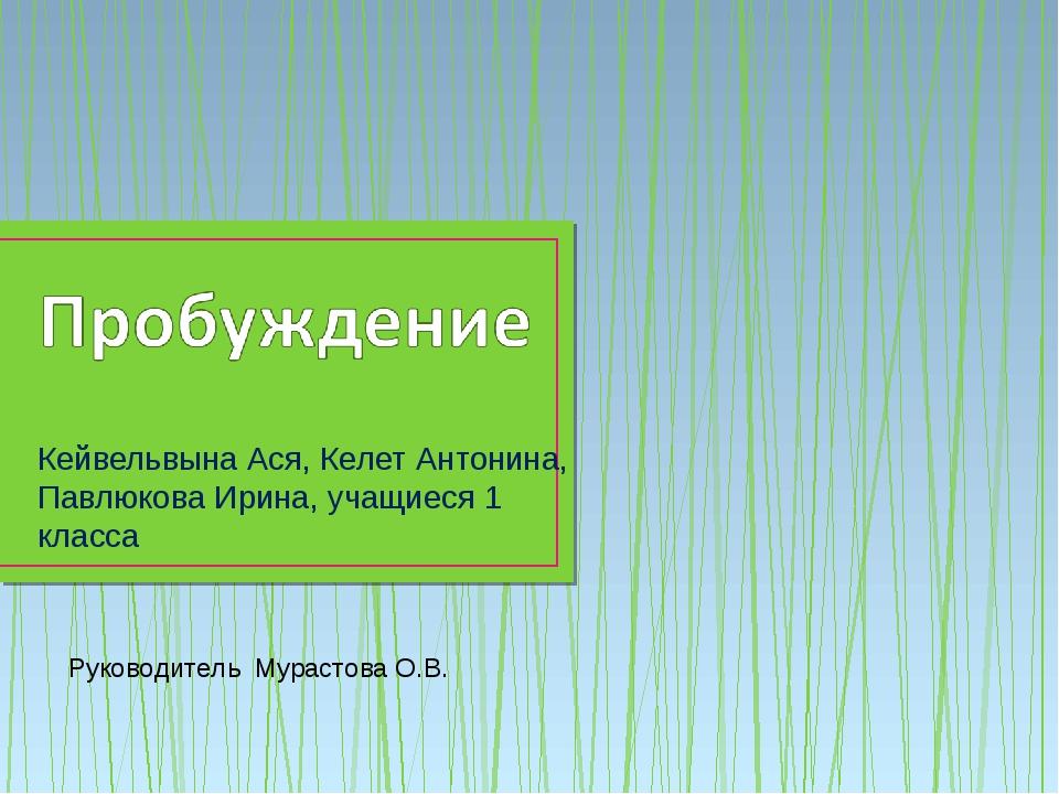 Кейвельвына Ася, Келет Антонина, Павлюкова Ирина, учащиеся 1 класса Руководит...
