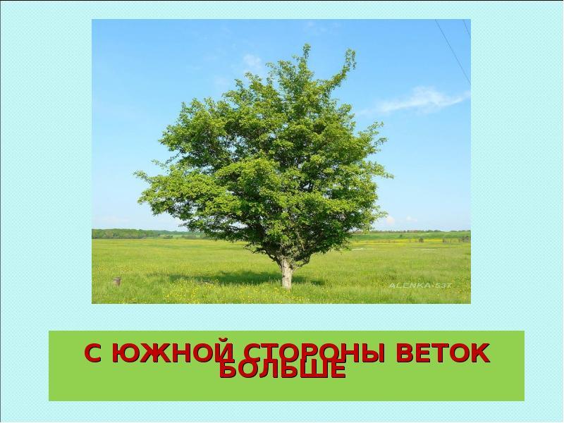 hello_html_m4104151.jpg