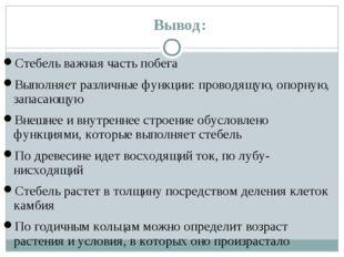 Вывод: Стебель важная часть побега Выполняет различные функции: проводящую, о