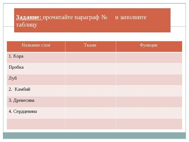 Задание: прочитайте параграф № и заполните таблицу Название слоя Ткани Функци...