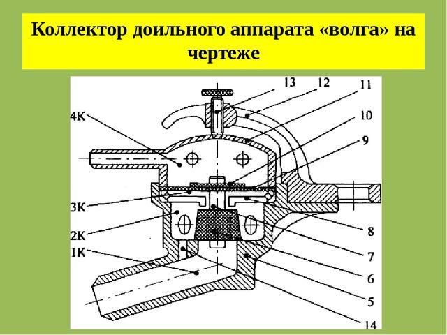 Коллектор доильного аппарата «волга» на чертеже