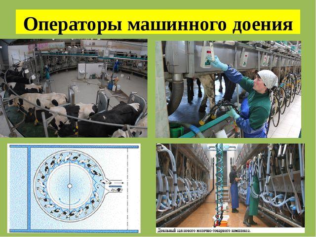 Операторы машинного доения