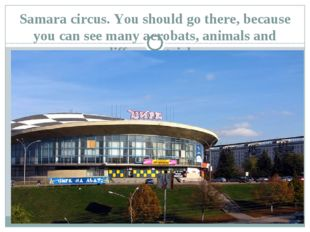 Samara circus. You should go there, because you can see many acrobats, animal
